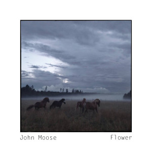 john_moose_flower_cover